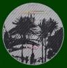 1969 - La baia dei porci, palme sull'isola